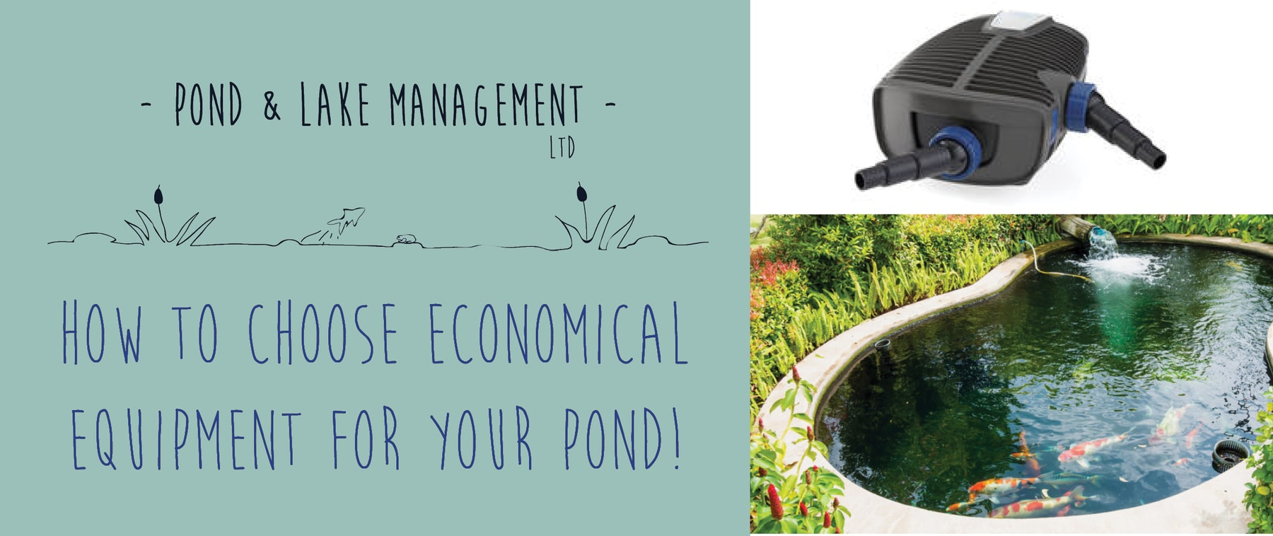 how to choose economical equipment for your pond! | pond